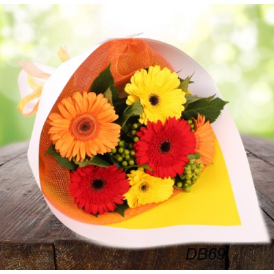Lovely Gerbera Bouquet - Half Dozen