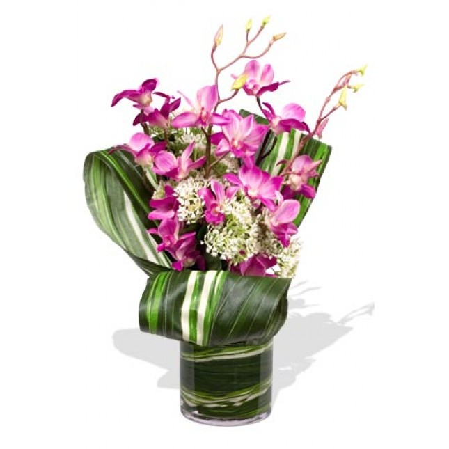 Myterious Orchids with vase