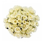 3doz of white Roses