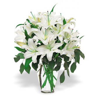 White Lily with Vase -for nation wide delivery